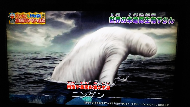 2019年1月1日(元旦)朝からUMA!? | KAGAYAKI